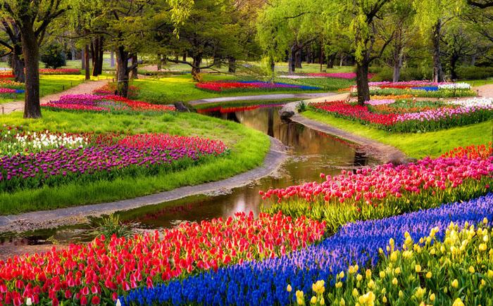 Парк Сова Кинен, Токио, Япония