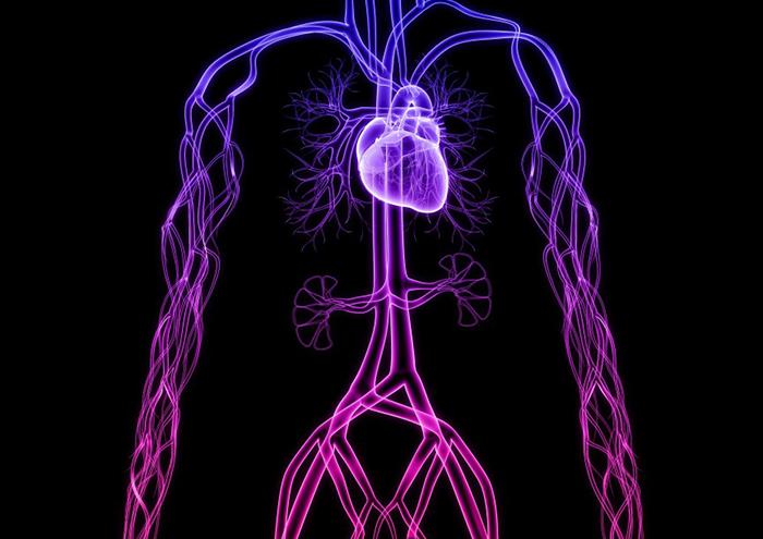 Лечение инсультов и сердечной недостаточности