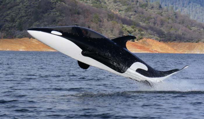 Подводная лодка «Касатка»