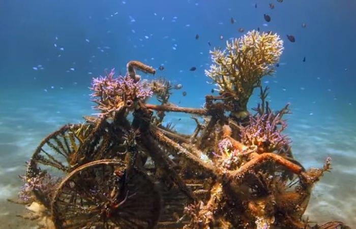 Подводные скульптуры, Бали