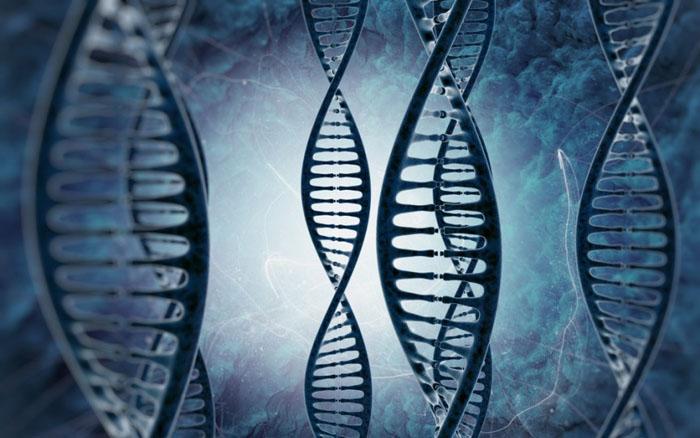 ДНК не горит