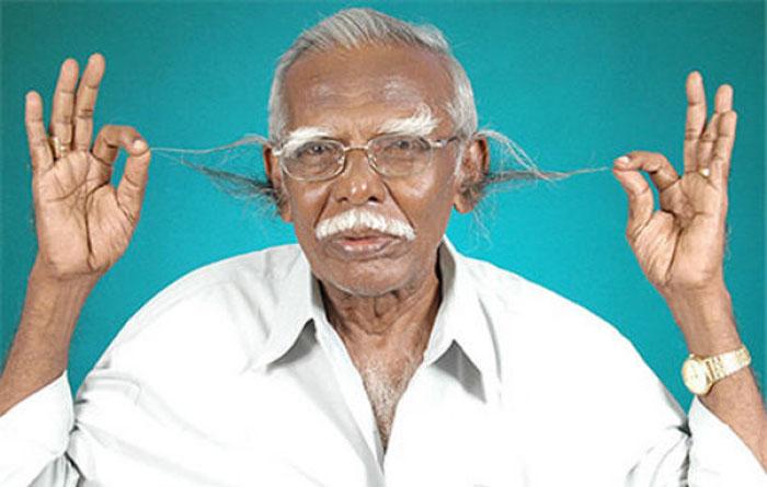 Самые длинные волосы в ушах