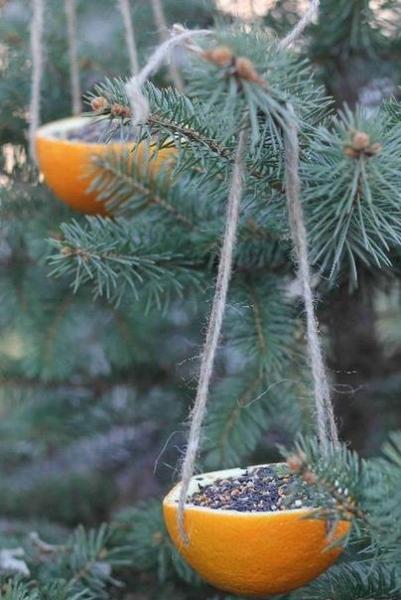 Апельсиновая кормушка самоделка
