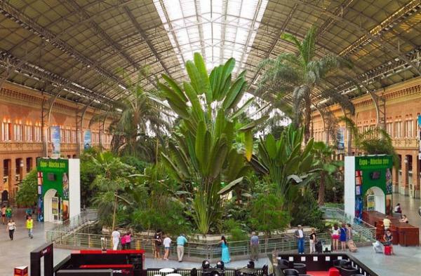 Мадрид: тропический сад на железнодорожном вокзале Аточа