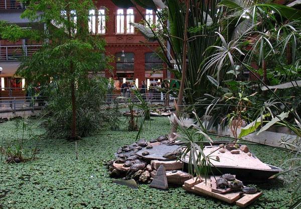 Среди пальм оборудован бассейн