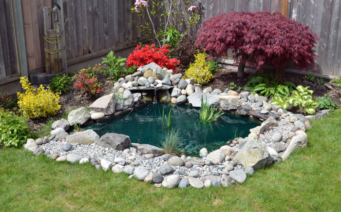 Райский уголок для отдыха: 25 потрясающих идей оформления водоёма в саду