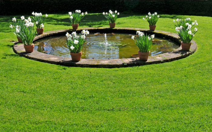 Круглый водоём в саду