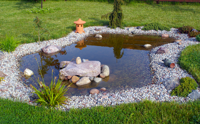 Мелкий пруд в саду