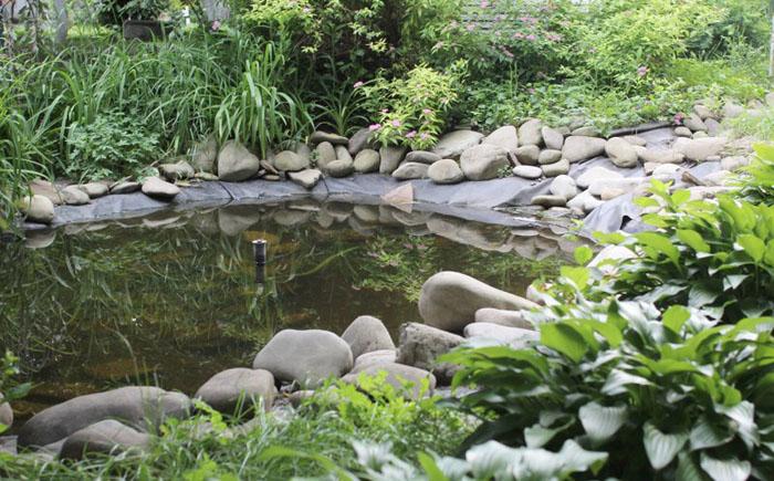Маленький пруд в саду с фонтаном