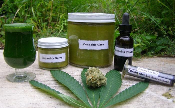 Лечение каннабисом: 10 основных заболеваний, которые лечатся марихуаной