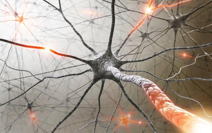 Склероз Диссеминированный фото