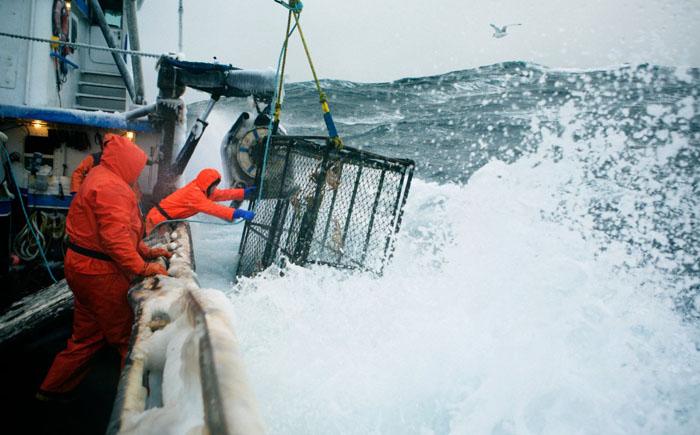 Работник рыболовецкого судна