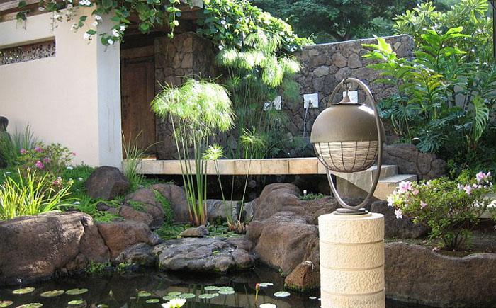 Сад в тропическом стиле от Daniel Moran Architect