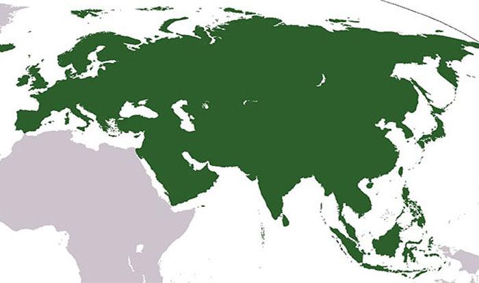 Европа - не континет