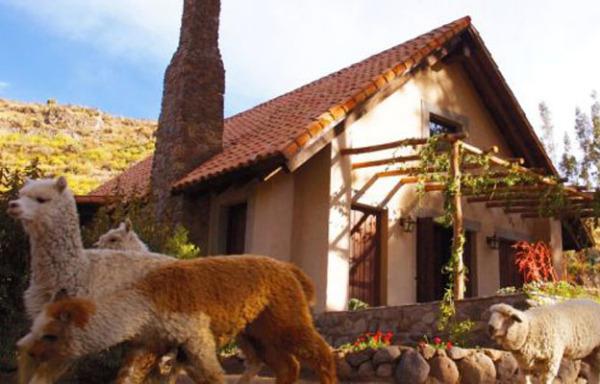 Las Casitas del Colca (Перу)