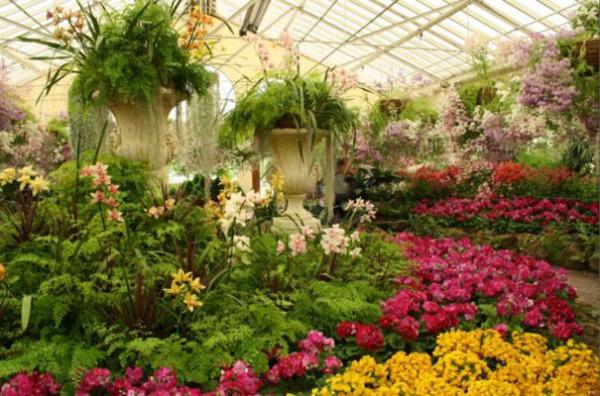 Королевский ботанический сад, Мельбурн, Австралия