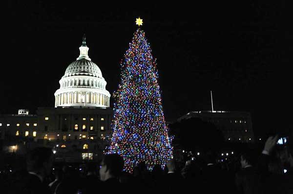 Рождественская елка возле Капитолия в Вашингтоне