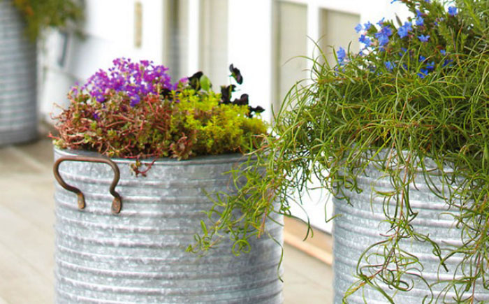 Высокие вёдра - простой способ  приподнять растения