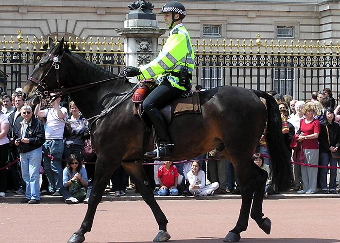 Национальная полиция Великобритании[