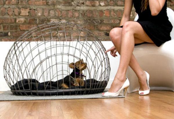 Стильная собачья конура в современном интерьере