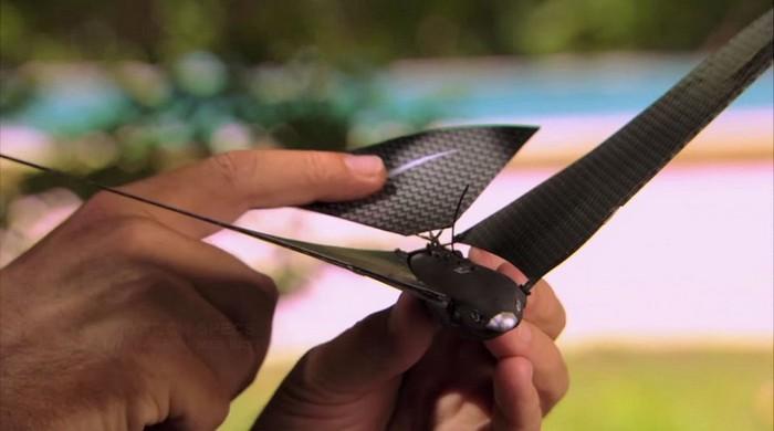Bionic Bird – искусственная птица под управлением смартфона