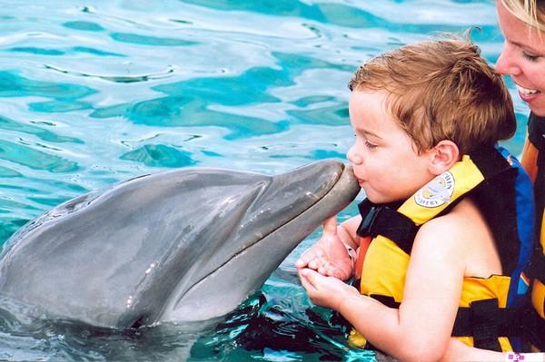 Дельфинотерапия. Источник фото: Airtour.lv