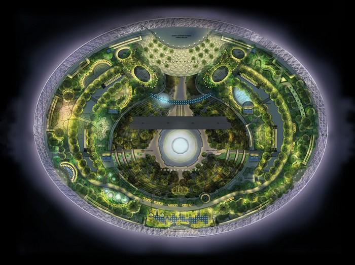 Схема ботанического сада в