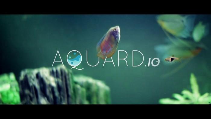 Aquardio – интерактивный аквариум на экране монитора