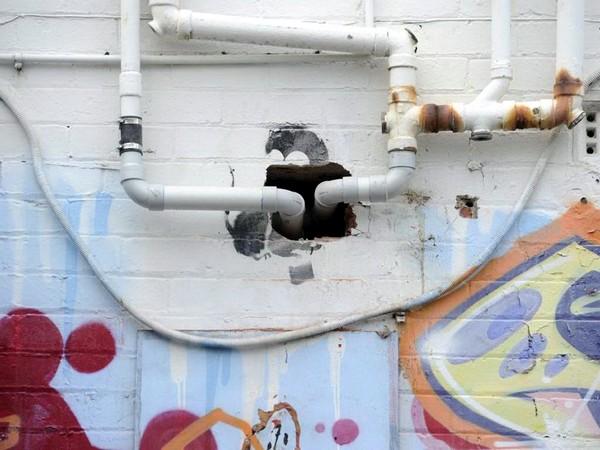 То, что осталось от Крысы-парашютиста. Источник фото: independent.co.uk