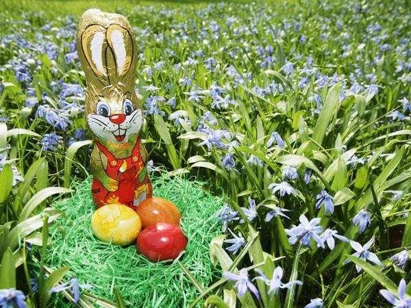 Пасхальный кролик и шоколадные яйца. Источник фото: zastavki.com