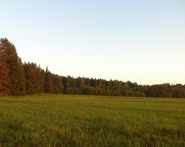 Поселок программистов в Кировской области