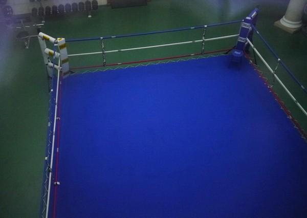 Спортивный комплекс в резиденции Межигорье. Источник фото: perevozchik00.livejournal.com