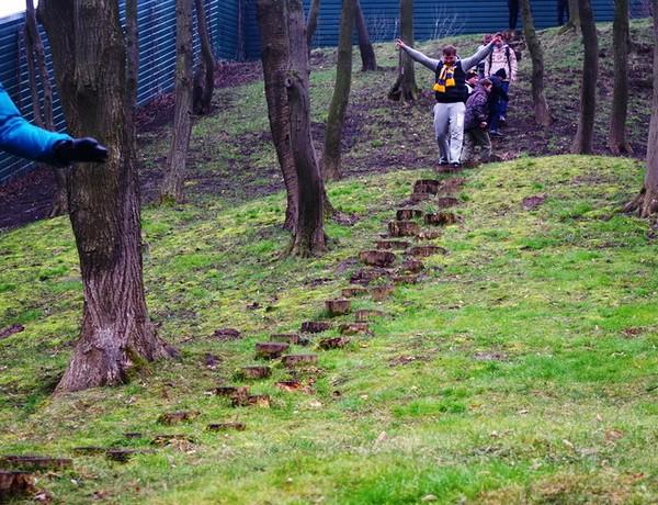 Дорожка из пеньков в резиденции Межигорье. Источник фото: interesniy-kiev.livejournal.com