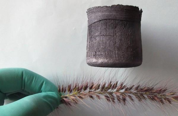Графеновый аэрогель - самый легкий в мире материал