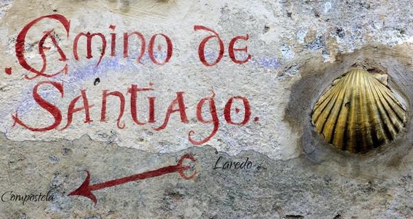 Раковина морского гребешка - один из символов паломничества по Camino de Santiago