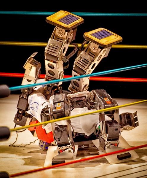 Robot Pro Wrestling – чемпионат по борьбе среди роботов