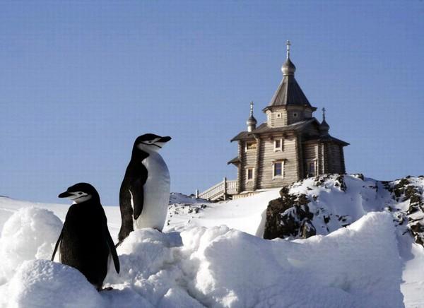 Церковь Святой Троицы на станции Беллинсгаузен. Источник фото: oceanographers.ru