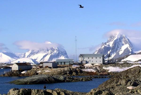 Украинская антарктическая станция Академик Вернадский. Источник фото: diveinfo.ru