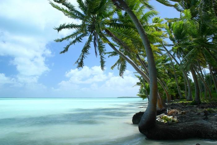 Пляж на одном из островов в Кирибати