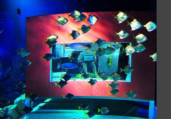 Подводный дом в парке развлечений Legoland Atlantis