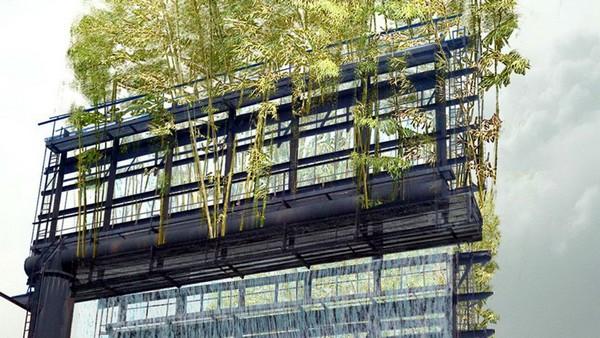 Бамбуковая роща на билборде