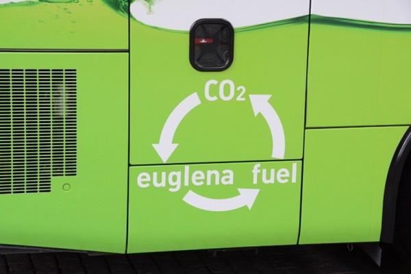 Isuzu DeuSEL - автобус с топливом на основе зеленых водорослей