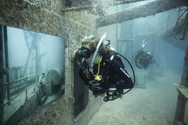Подводная фотогалерея у берегов Флориды. Источник фото: The Sinking World