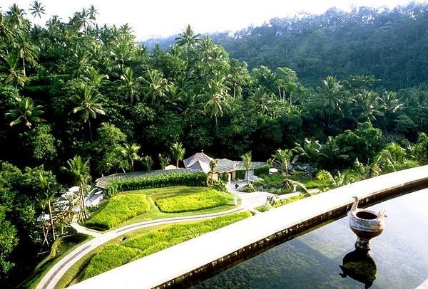 Бассейн в джунглях на крыше отеля Four Seasons Resort Bali. Источник фото: facethewall.com