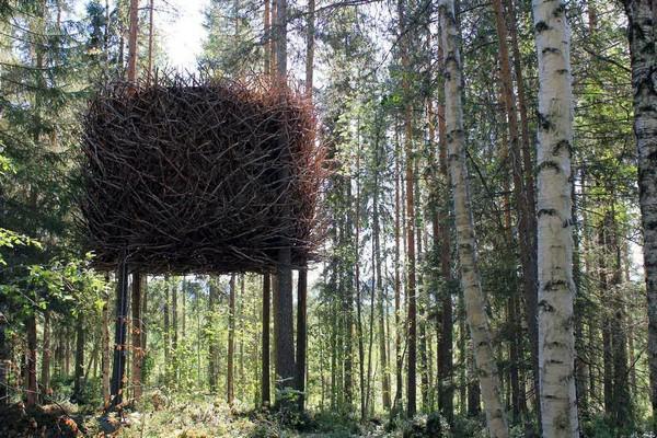 Отель The Birds Nest в Швеции. Источник фото: tehne.com