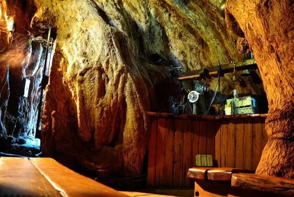 Бар Sunland Baobab Pub внутри древнего баобаба. Источник фото: 4-mevsim.blogspot.com
