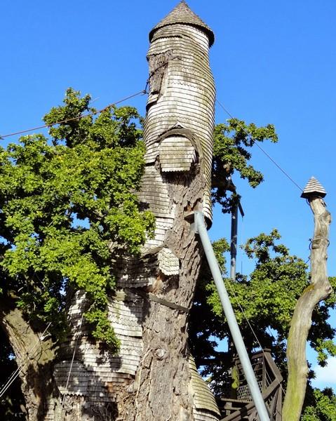 Дуб-часовня в Нормандии. Источник фото: sciences-paysages.blogspot.com