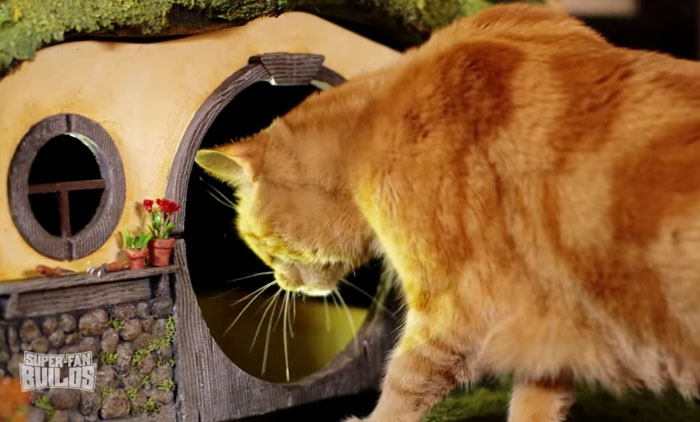 Домик для кошки в виде норы хоббита.