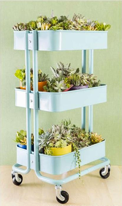 Стойка на колесиках для растений.