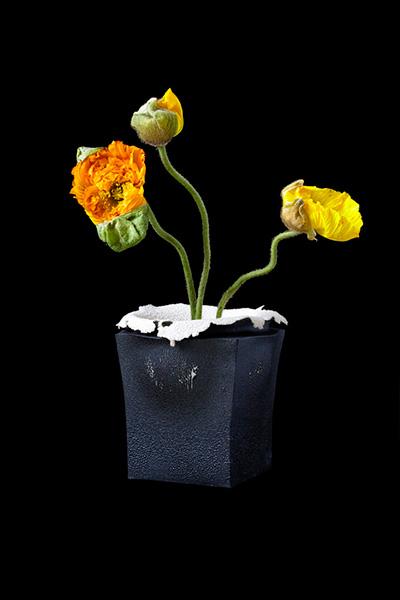 Креативные разноцветные вазы.